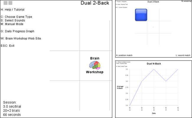 Screenshot Brain Workshop